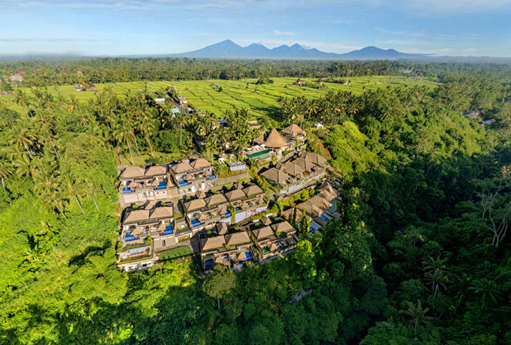 熱帯雨林の中に建つリゾート