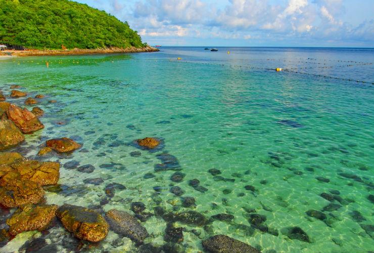コーラル島フィッシングツアー/イメージ