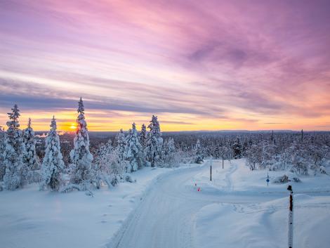 ◇フィンランド:夕暮れの樹氷