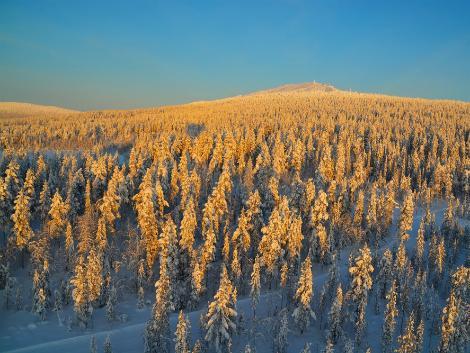 ◇フィンランド:雪山