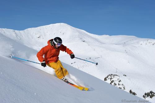 スキーを楽しむ!(イメージ)