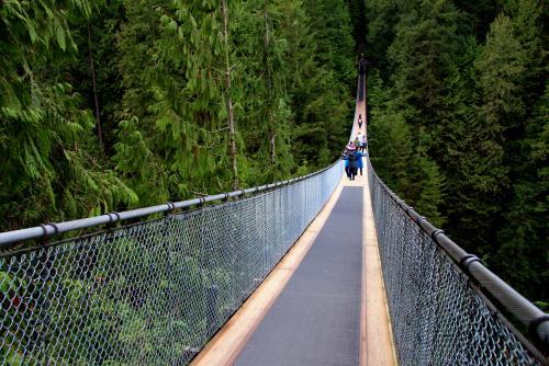 キャピラノ吊り橋を渡った先にもアトラクションがあります(バンクーバー)