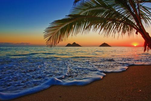 ベストビーチ・ランキングにも登場する美しいラニカイビーチ