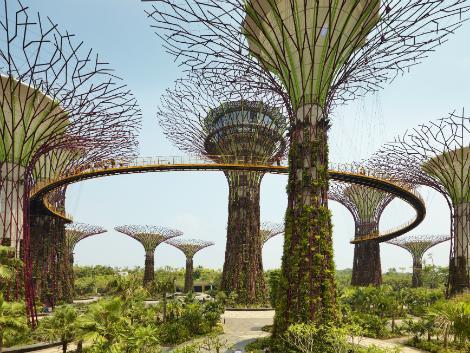 シンガポール:スーパツリーグローブ