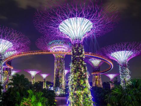 シンガポール:夜のスーパーツリーグローブ