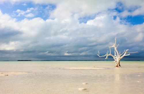 バハマ・ハーバー島の海