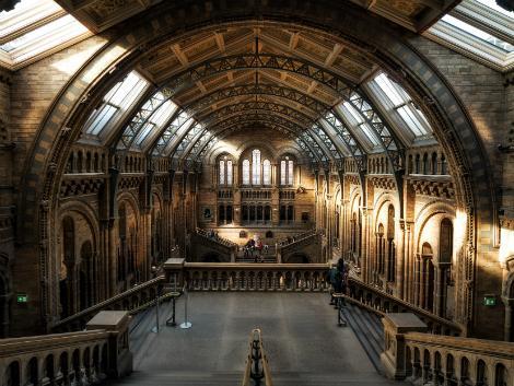 ◇◎ロンドン:ロンドン自然史博物館