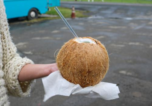 ココナッツミルク イメージ