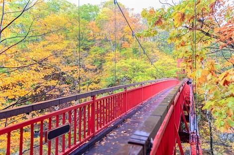 定山渓温泉:色づく秋の二見吊橋(イメージ)
