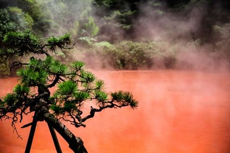 ◇別府温泉:血の池地獄