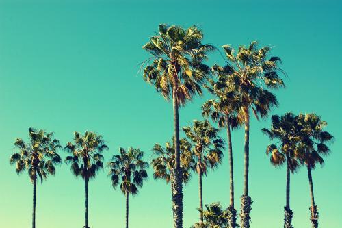 サンタモニカの青い空(ロサンゼルス)