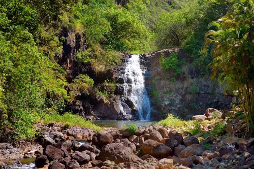 ワイメアの滝公園(オアフ島)
