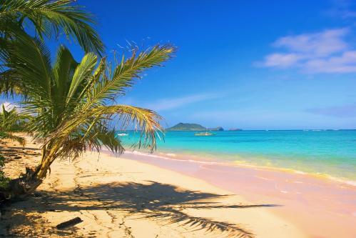 全米で最も美しいビーチとも言われるラニカイビーチ