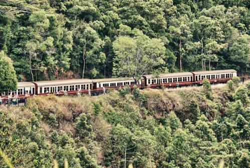 絶景が望めるキュランダ高原列車