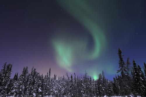 オーロラ(イメージ)c) Aurora Wonderland Tours & Beck's Kennels
