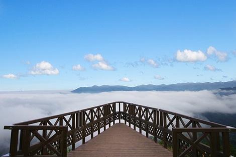 トマム:雲海テラス スカイウェッジ イメージ(星野リゾートトマム 公式サイトより)
