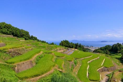 ◇島原:谷水棚田