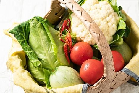 新鮮野菜もニセコの魅力♪